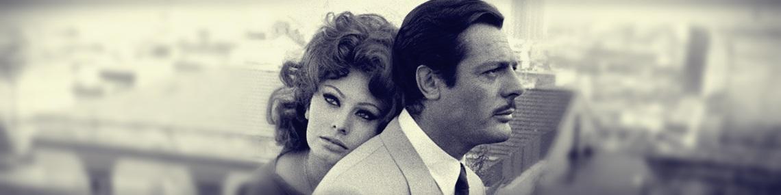 The Hollywood Archive Sophia Loren